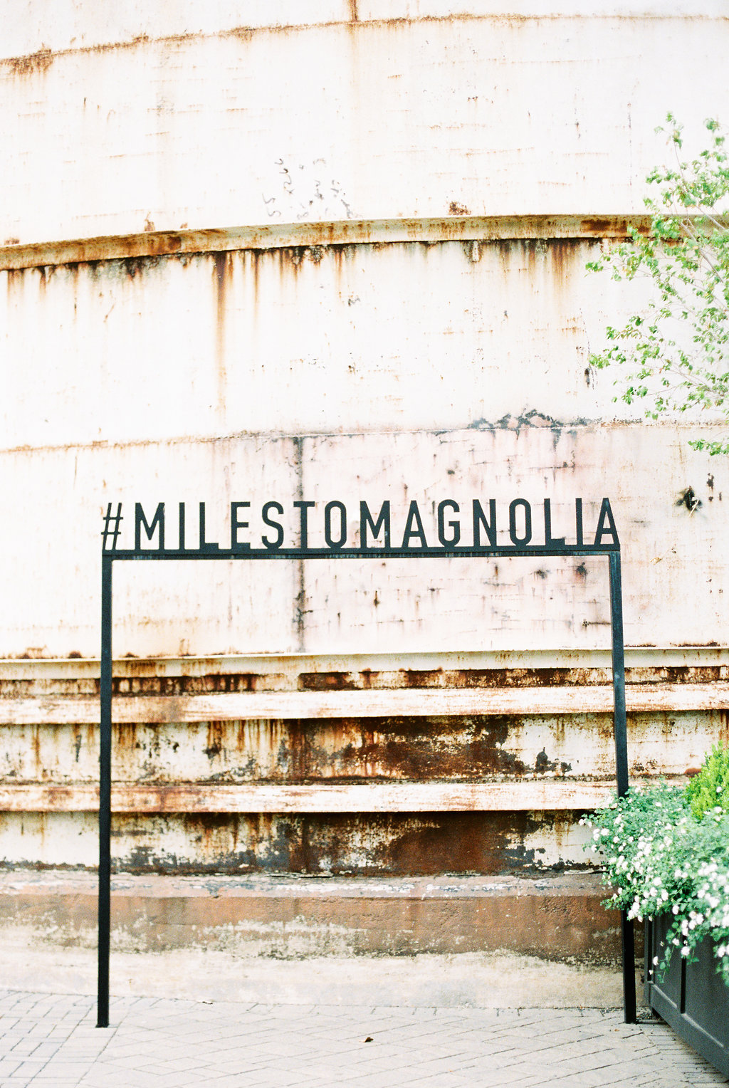 The 7 Things You Must Do at Magnolia Market on Cottage HIll | cottagehill.co3.jpg
