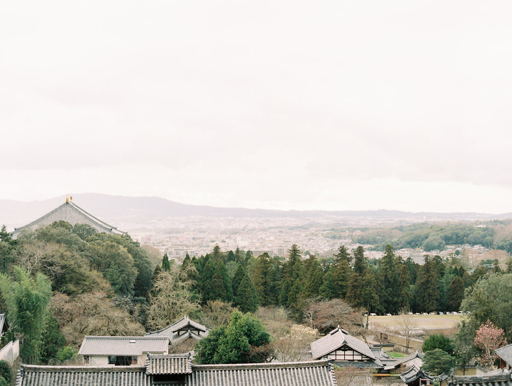 The Best of Travel in Japan now on Cottage Hill | cottagehill.co1.jpg