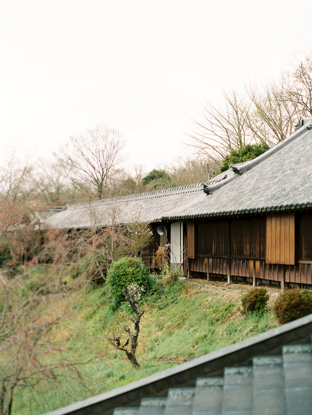 The Best of Travel in Japan now on Cottage Hill | cottagehill.co2.jpg