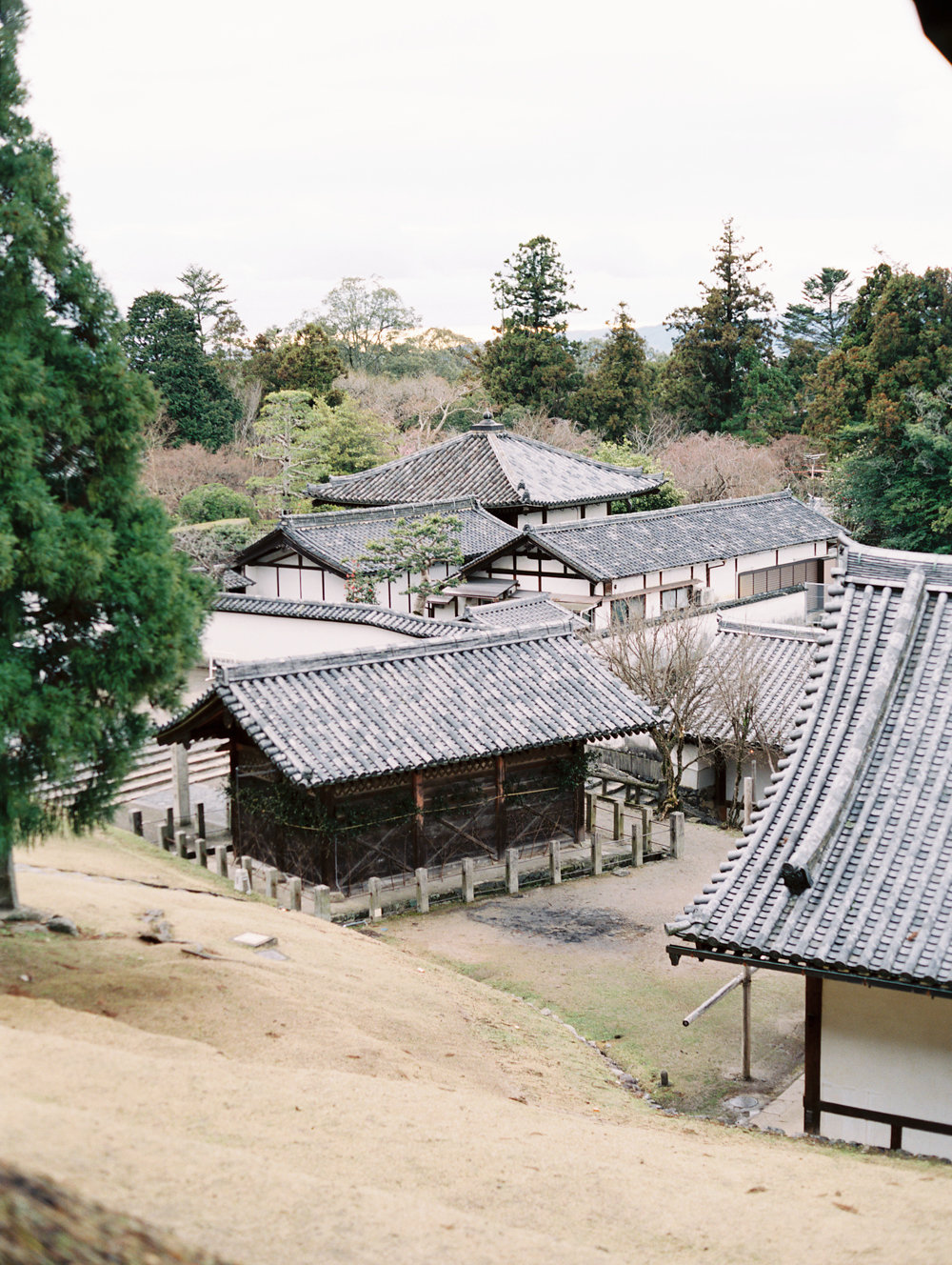 The Best of Travel in Japan now on Cottage Hill | cottagehill.co5.jpg