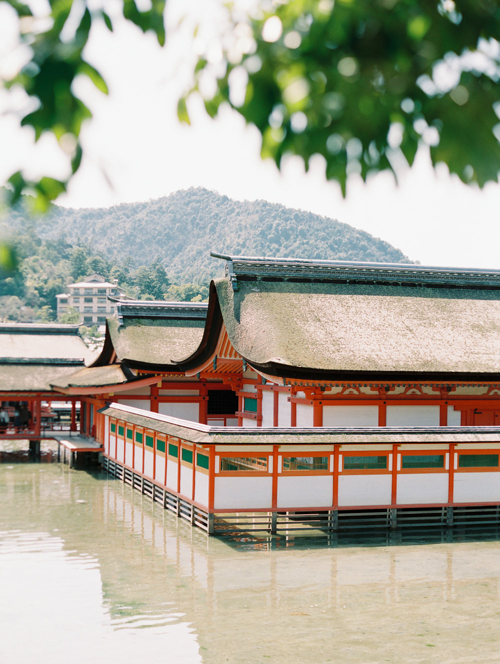 The Best of Travel in Japan now on Cottage Hill | cottagehill.co9.jpg