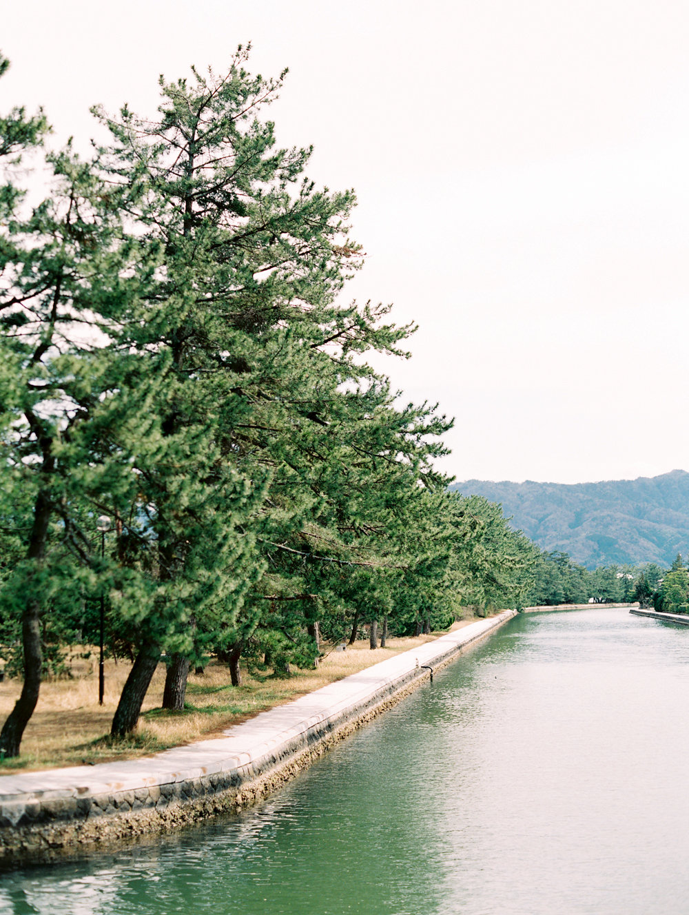 The Best of Travel in Japan now on Cottage Hill | cottagehill.co15.jpg