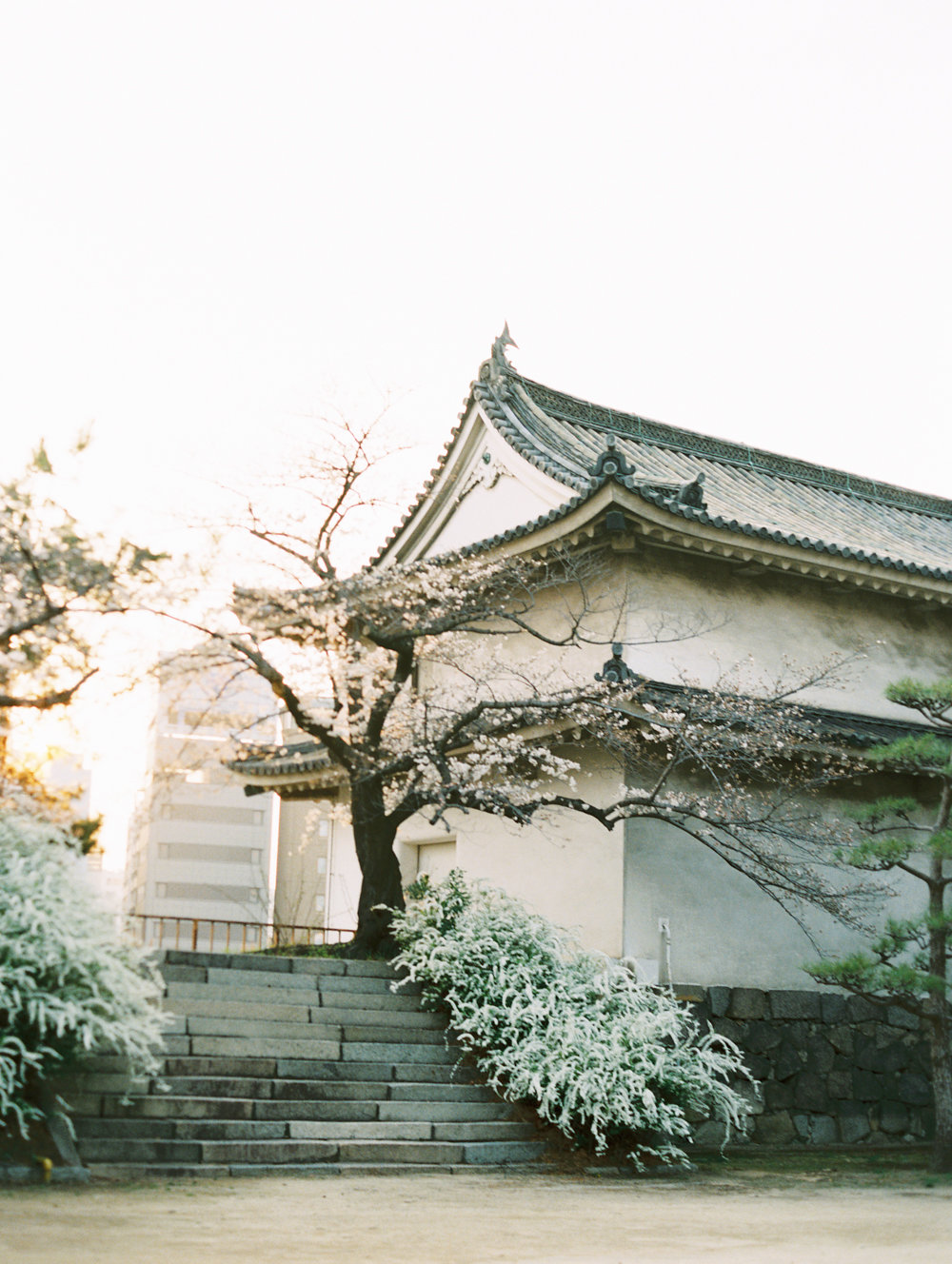 The Best of Travel in Japan now on Cottage Hill | cottagehill.co29.jpg