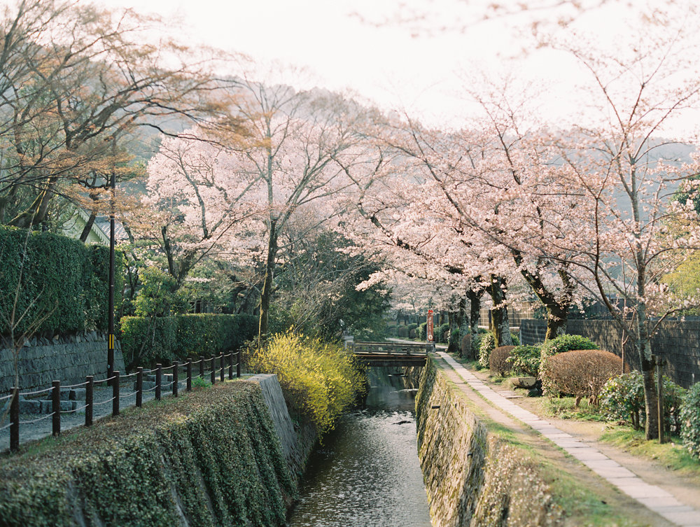 The Best of Travel in Japan now on Cottage Hill | cottagehill.co56.jpg