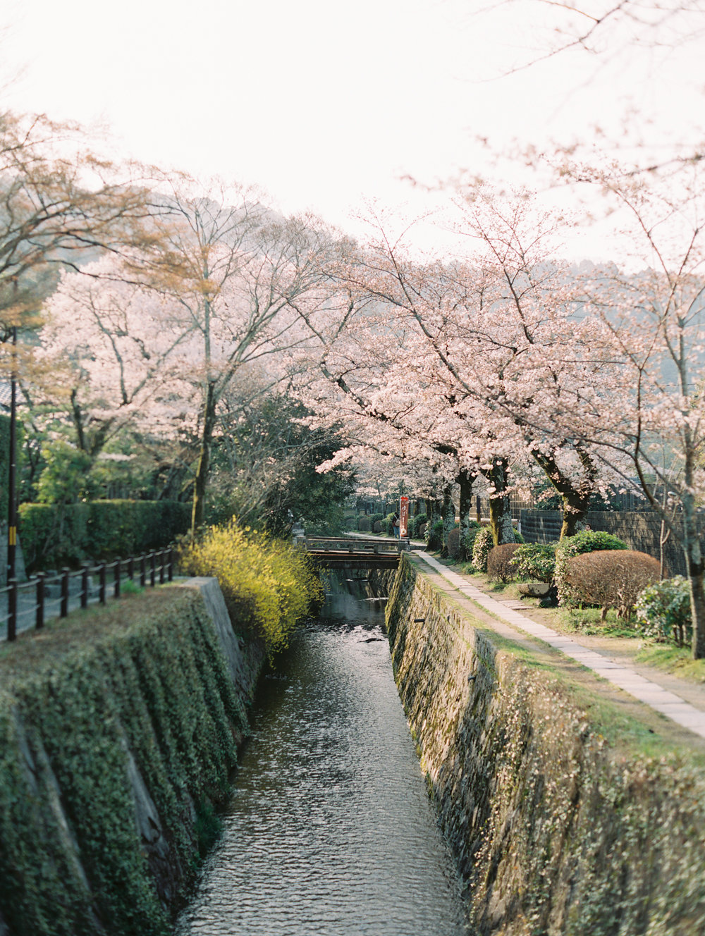 The Best of Travel in Japan now on Cottage Hill | cottagehill.co59.jpg