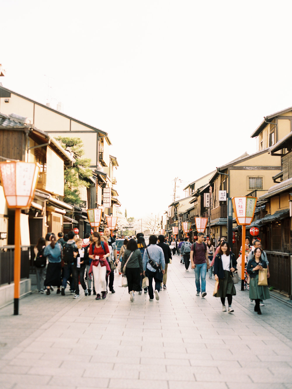 The Best of Travel in Japan now on Cottage Hill | cottagehill.co75.jpg