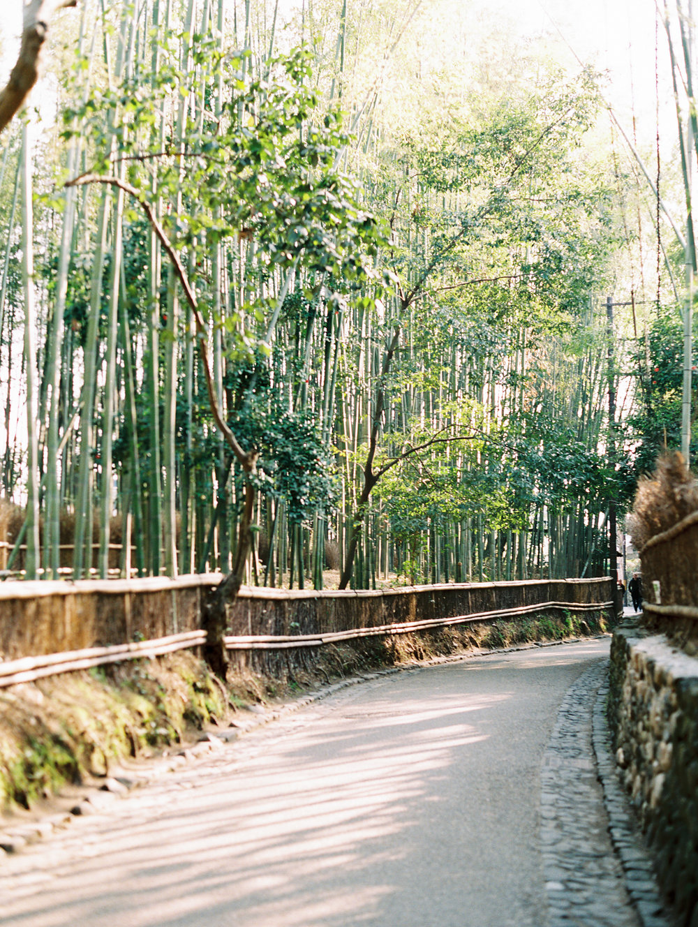 The Best of Travel in Japan now on Cottage Hill | cottagehill.co84.jpg