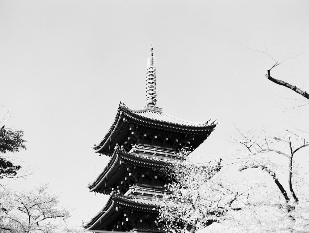 The Best of Travel in Japan now on Cottage Hill | cottagehill.co100.jpg
