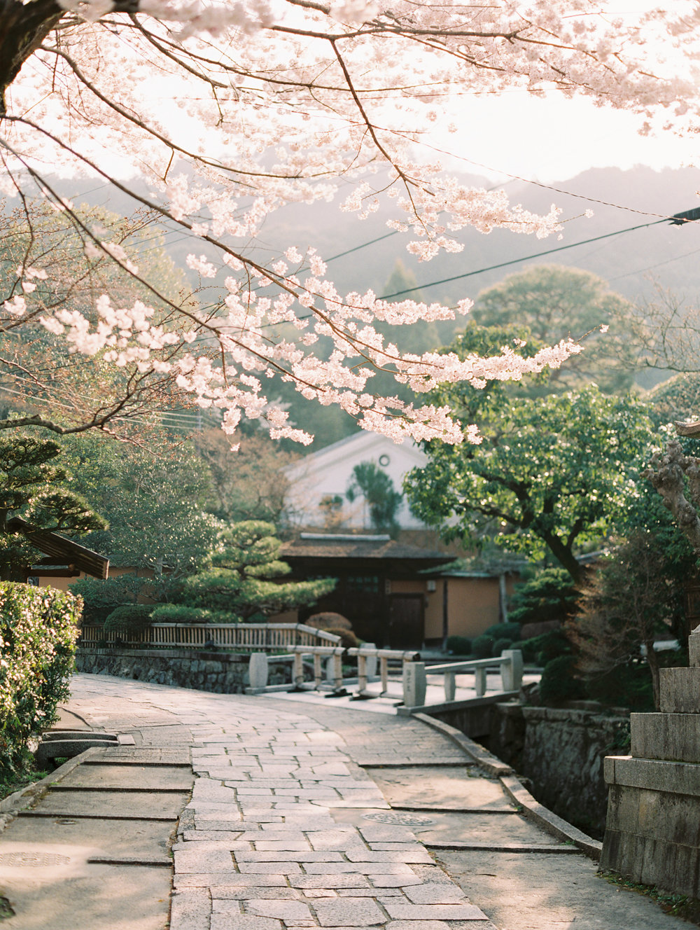 The Best of Travel in Japan now on Cottage Hill | cottagehill.co57.jpg