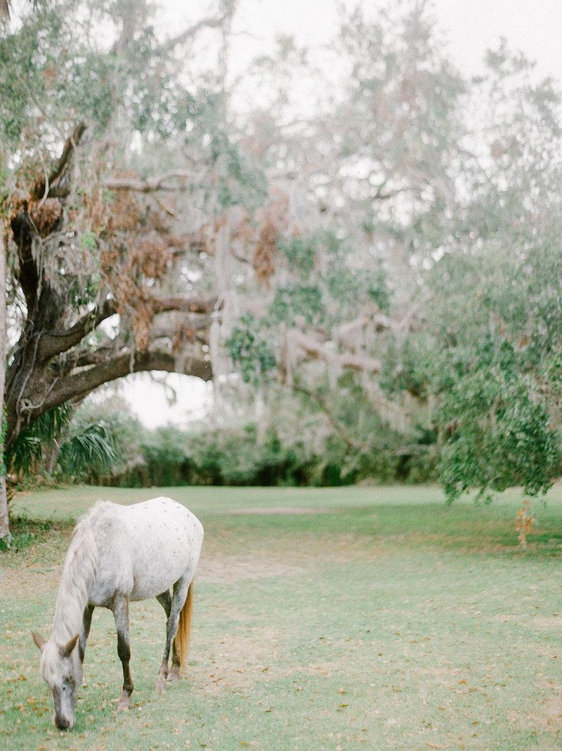 © Cottage Hill, LLC | Greyfield Inn | cottagehill.co45.jpg
