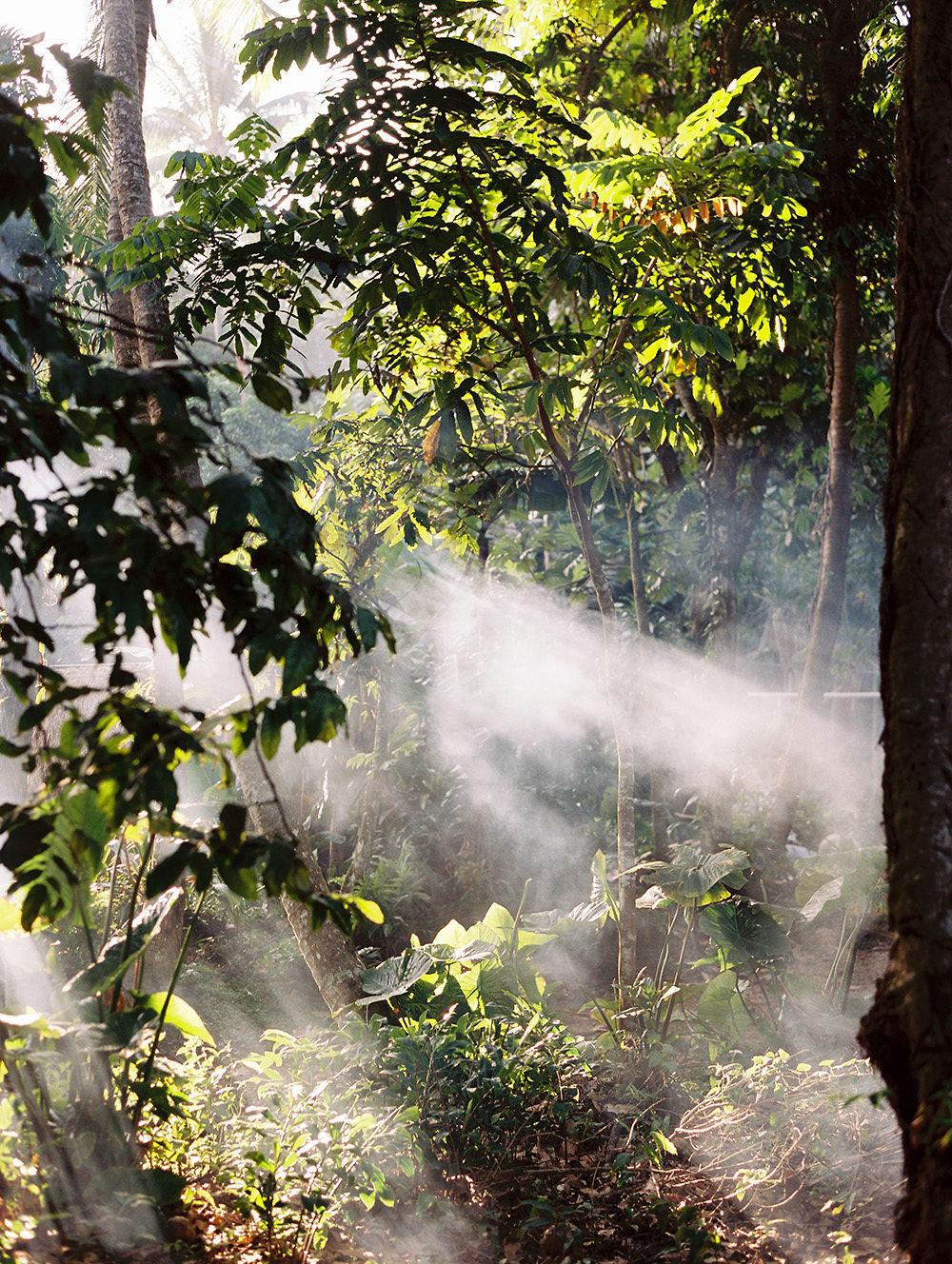 © Cottage Hill, LLC | cottagehill.co | Fiji42.jpg