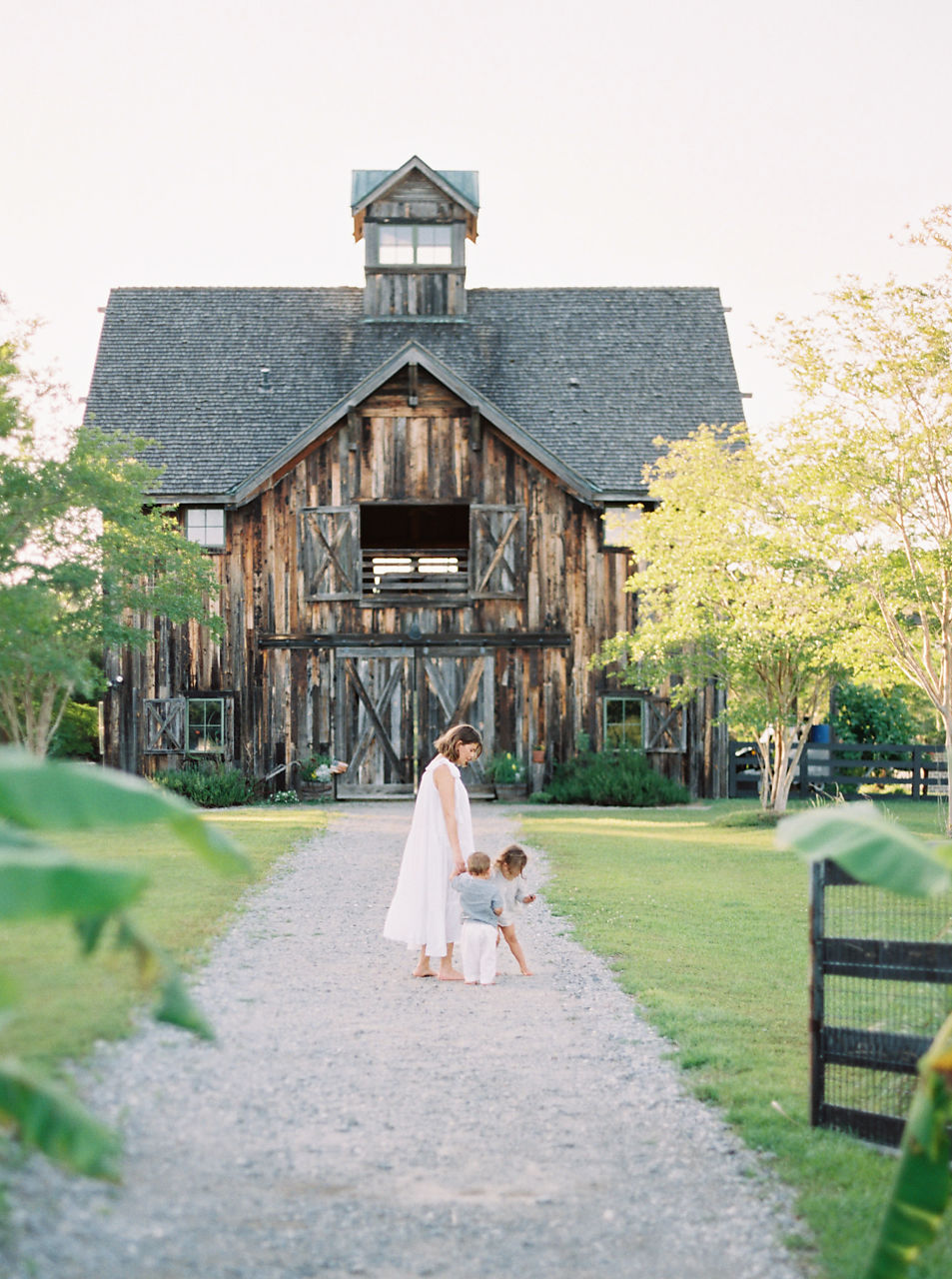 © Cottage Hill, LLC | cottagehill.co | Motherhood Organic Farm Estate3.jpg