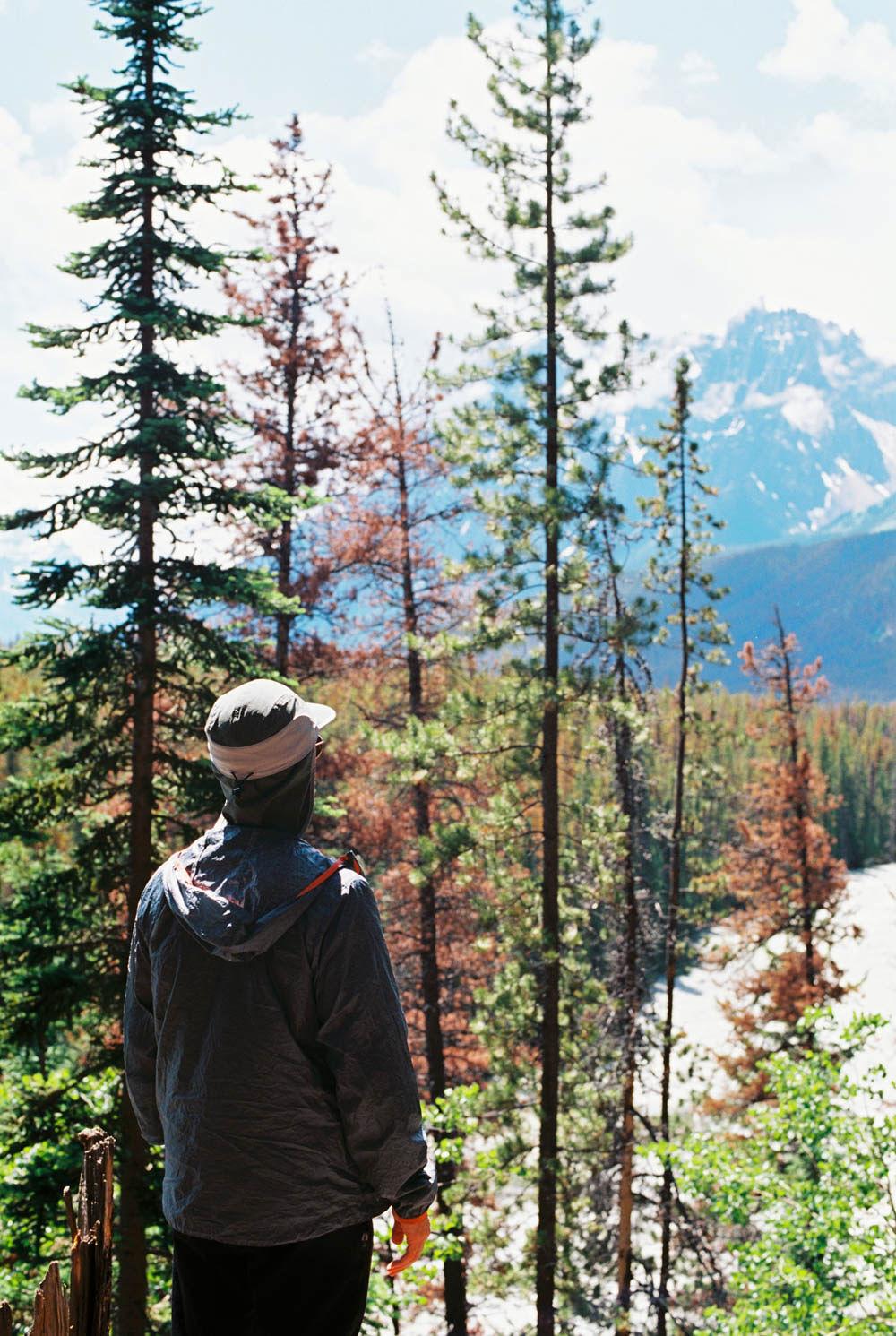 © Cottage Hill, LLC | cottagehill.co | Canadian Rockies4.jpg