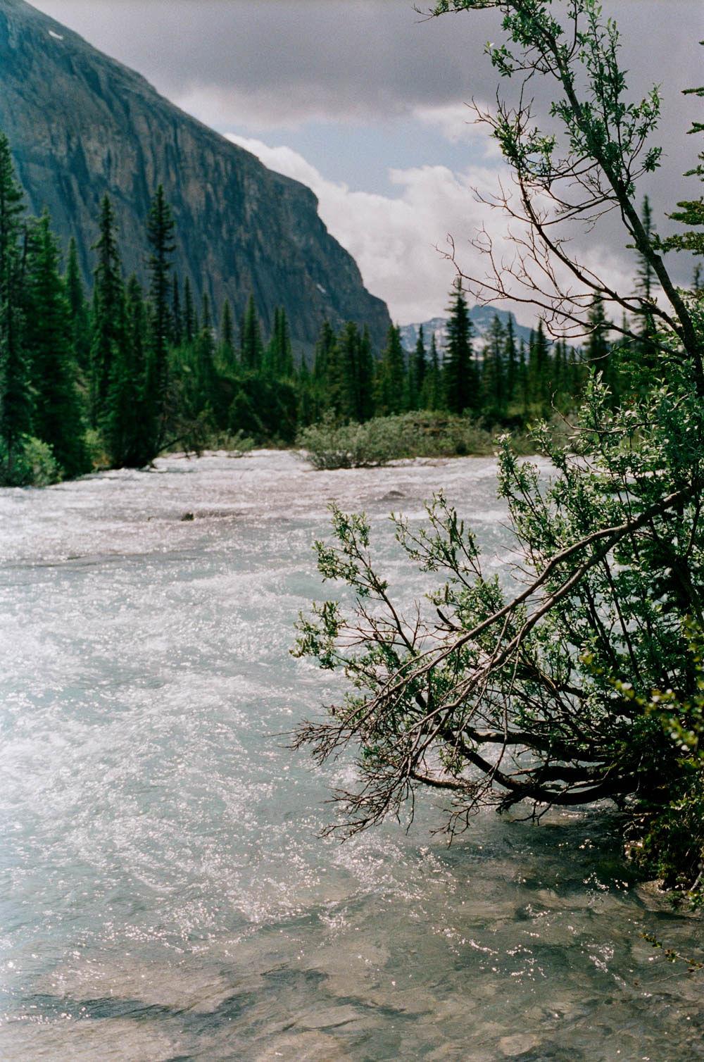 © Cottage Hill, LLC | cottagehill.co | Canadian Rockies17.jpg