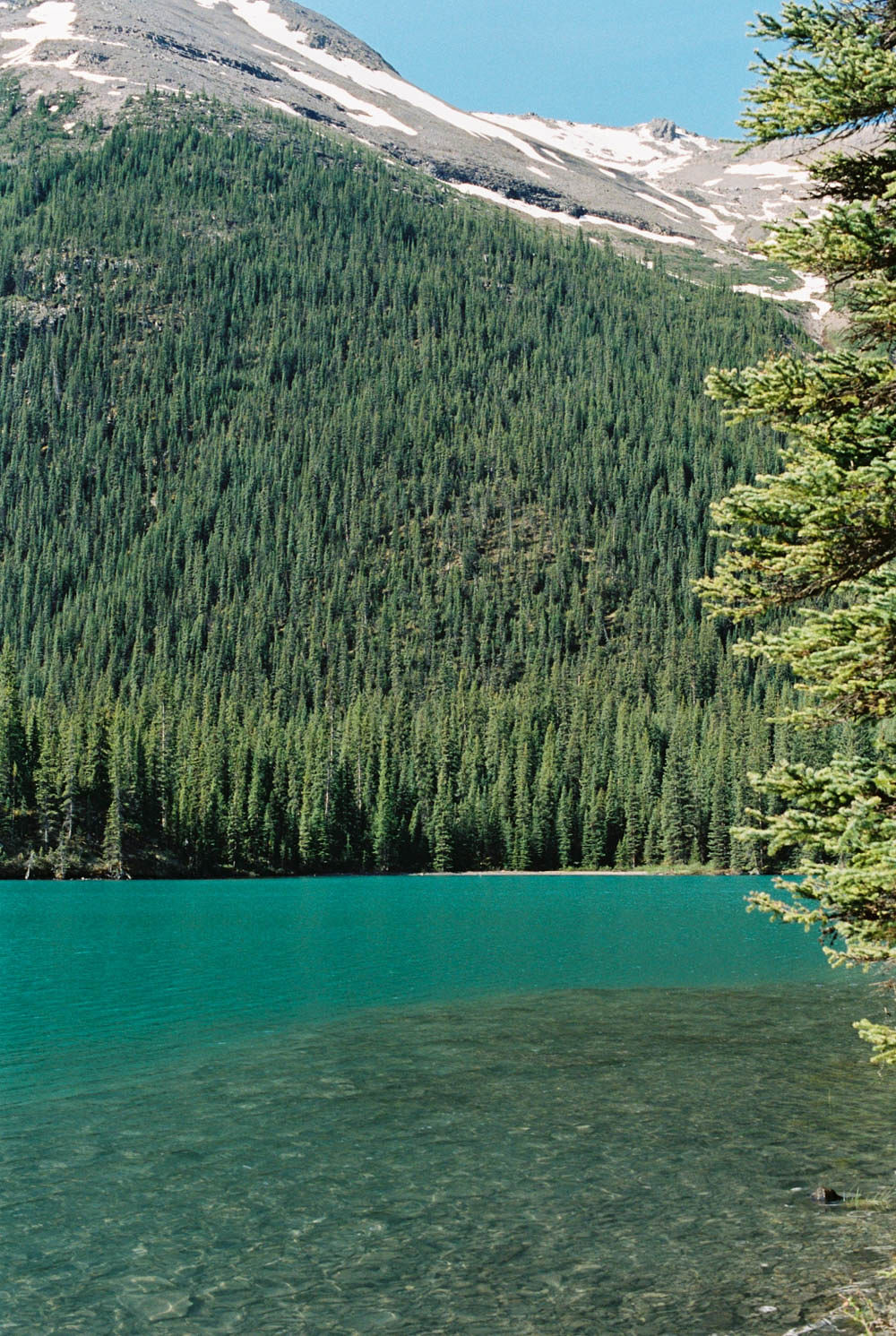 © Cottage Hill, LLC | cottagehill.co | Canadian Rockies25.jpg