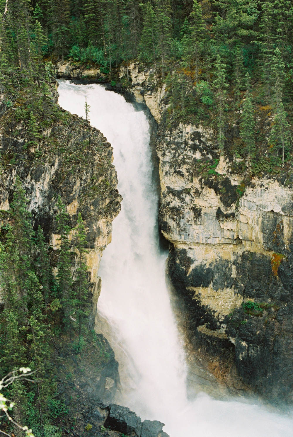 © Cottage Hill, LLC | cottagehill.co | Canadian Rockies38.jpg