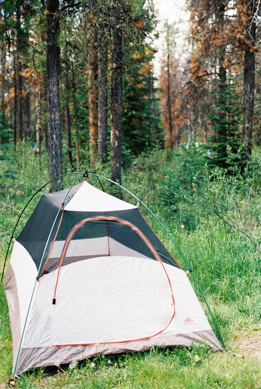 © Cottage Hill, LLC | cottagehill.co | Canadian Rockies47.jpg