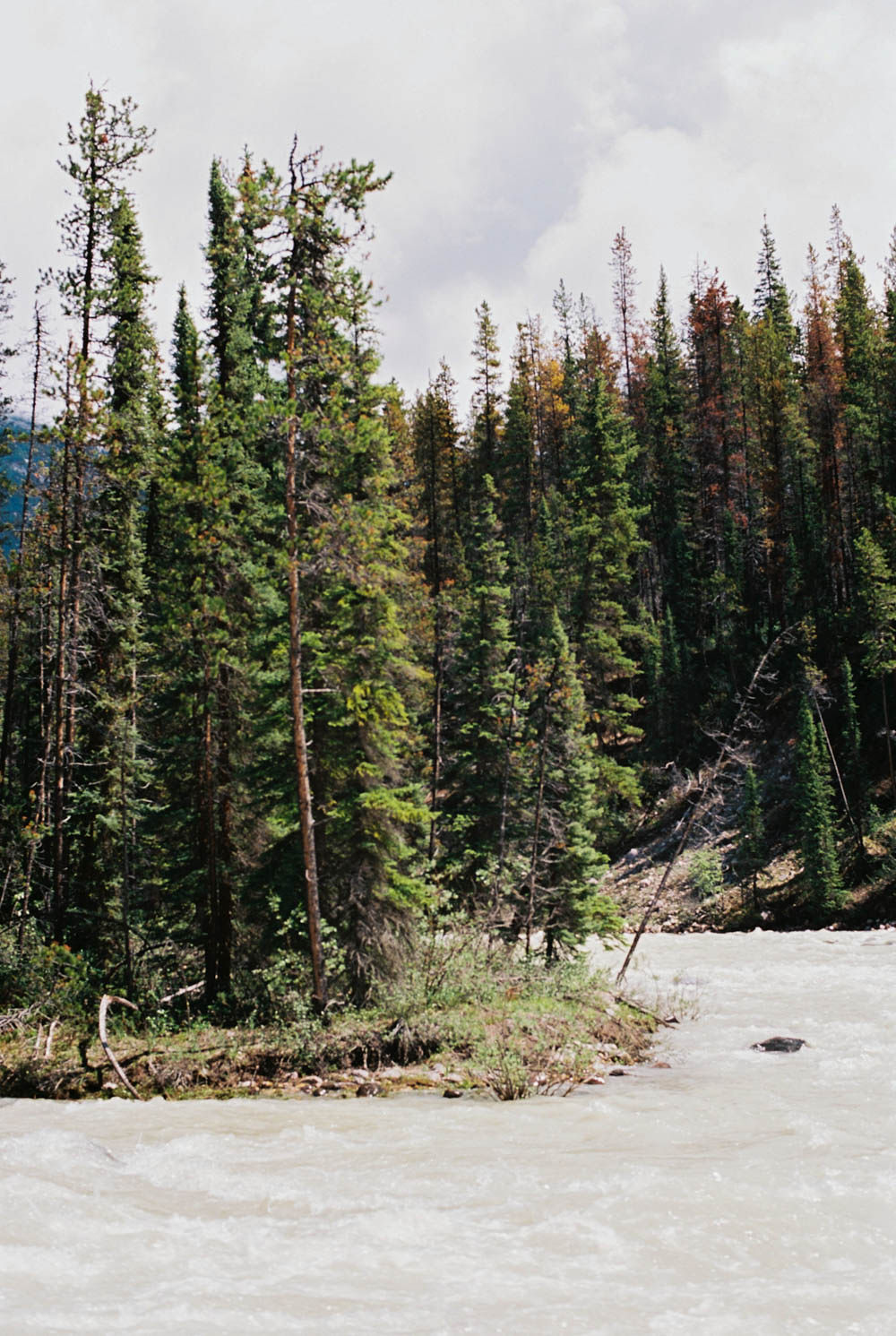 © Cottage Hill, LLC | cottagehill.co | Canadian Rockies70.jpg