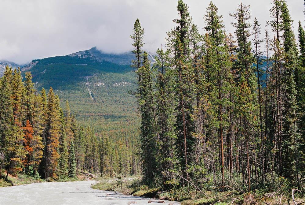 © Cottage Hill, LLC | cottagehill.co | Canadian Rockies71.jpg