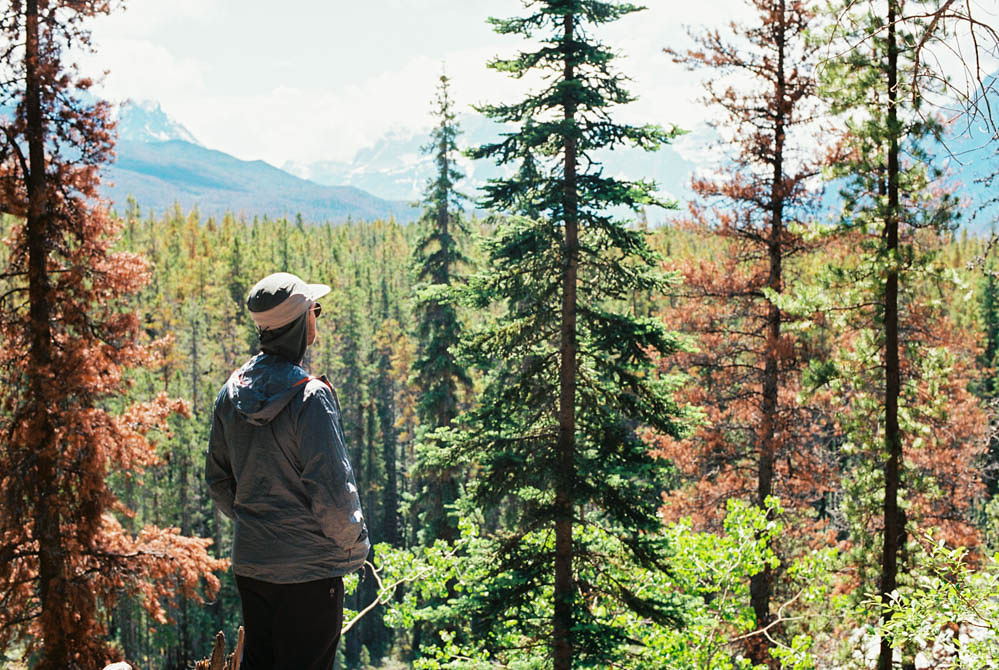 © Cottage Hill, LLC | cottagehill.co | Canadian Rockies73.jpg