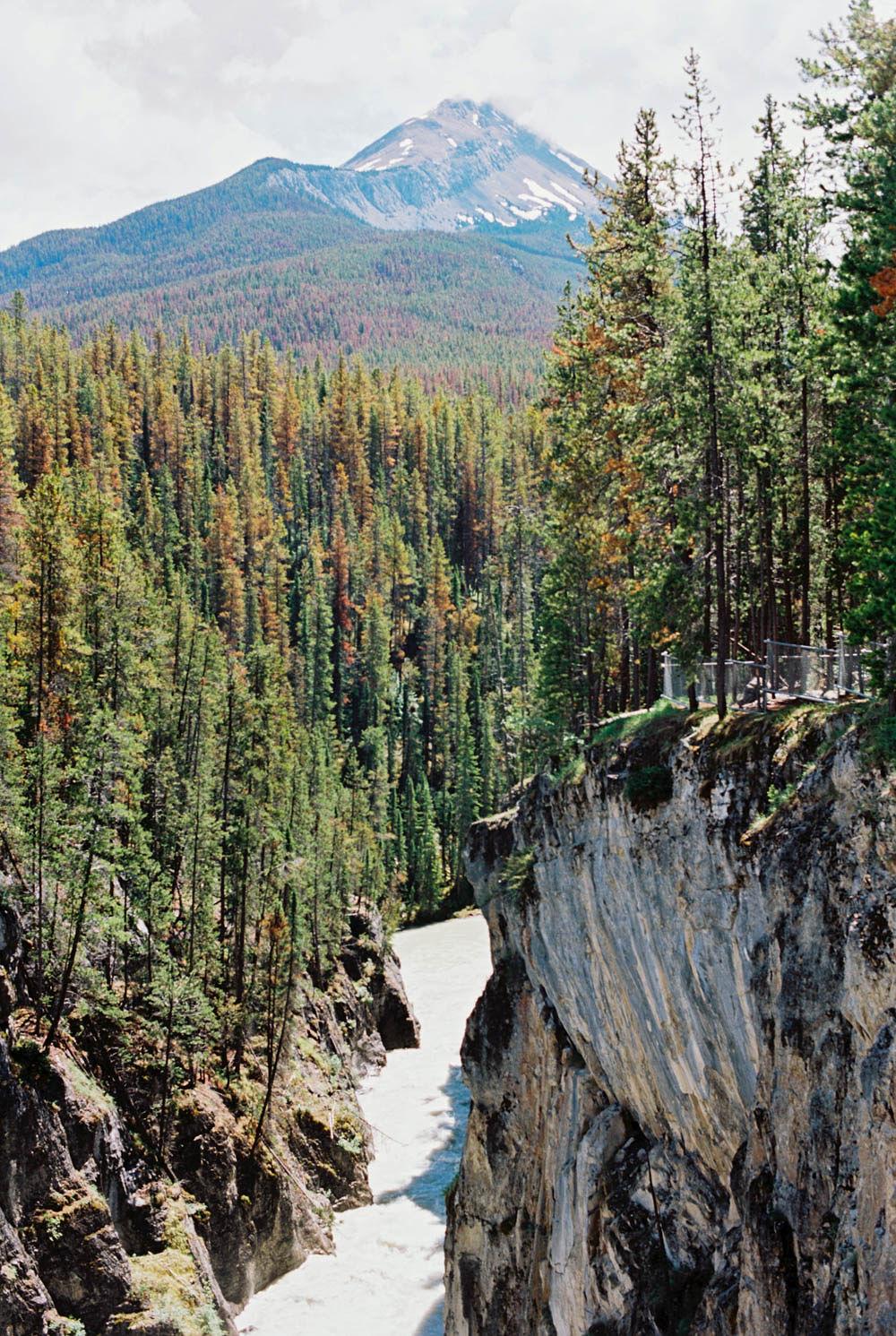 © Cottage Hill, LLC | cottagehill.co | Canadian Rockies72.jpg