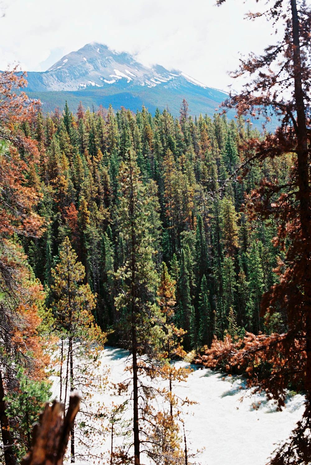© Cottage Hill, LLC | cottagehill.co | Canadian Rockies74.jpg