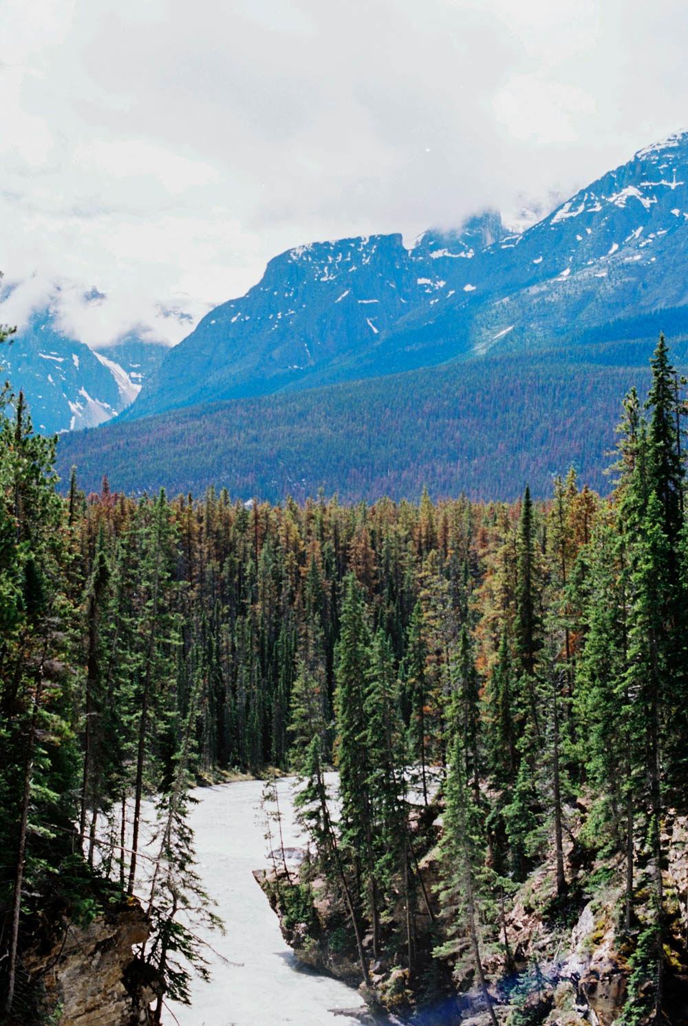 © Cottage Hill, LLC | cottagehill.co | Canadian Rockies76.jpg