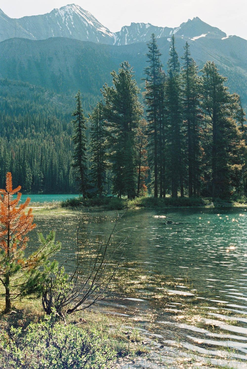 © Cottage Hill, LLC | cottagehill.co | Canadian Rockies24.jpg