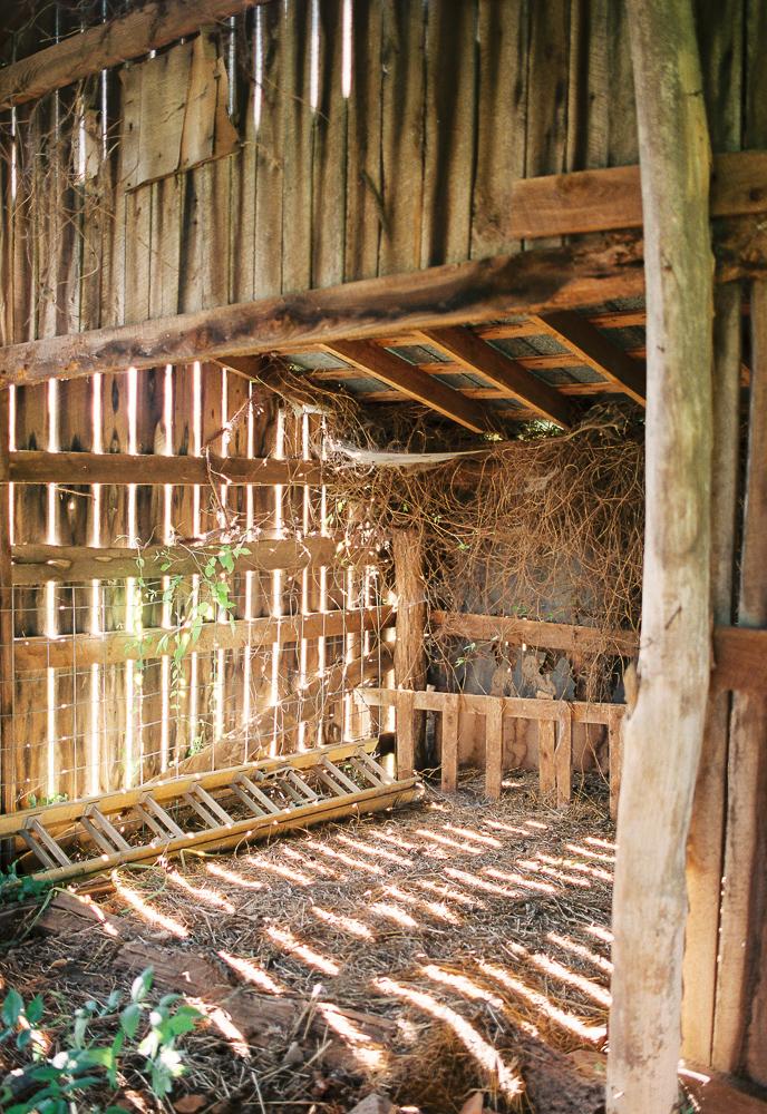 © Cottage Hill, LLC   cottagehill.co   Rose Lane Farm111.jpg