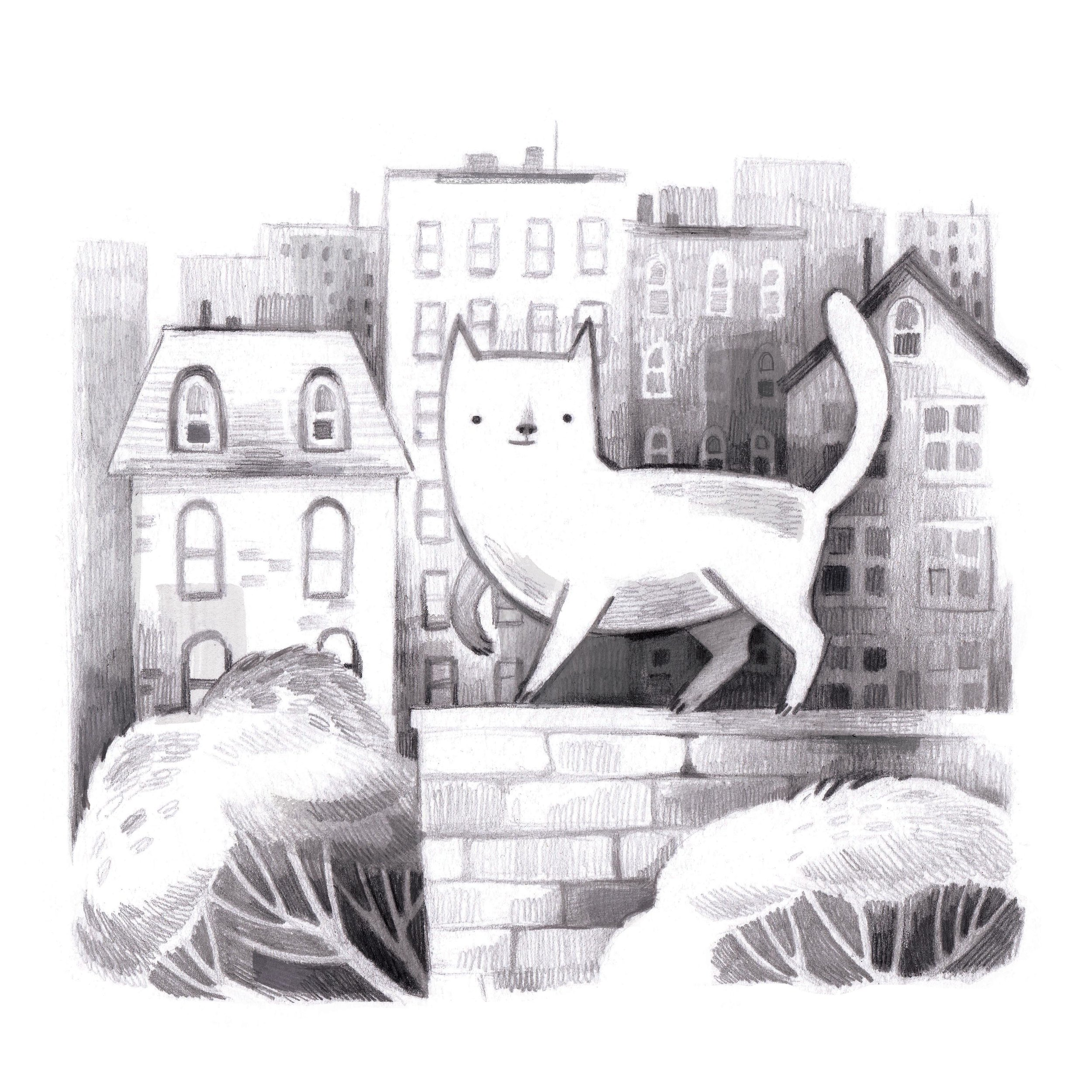 city cat LR.jpg