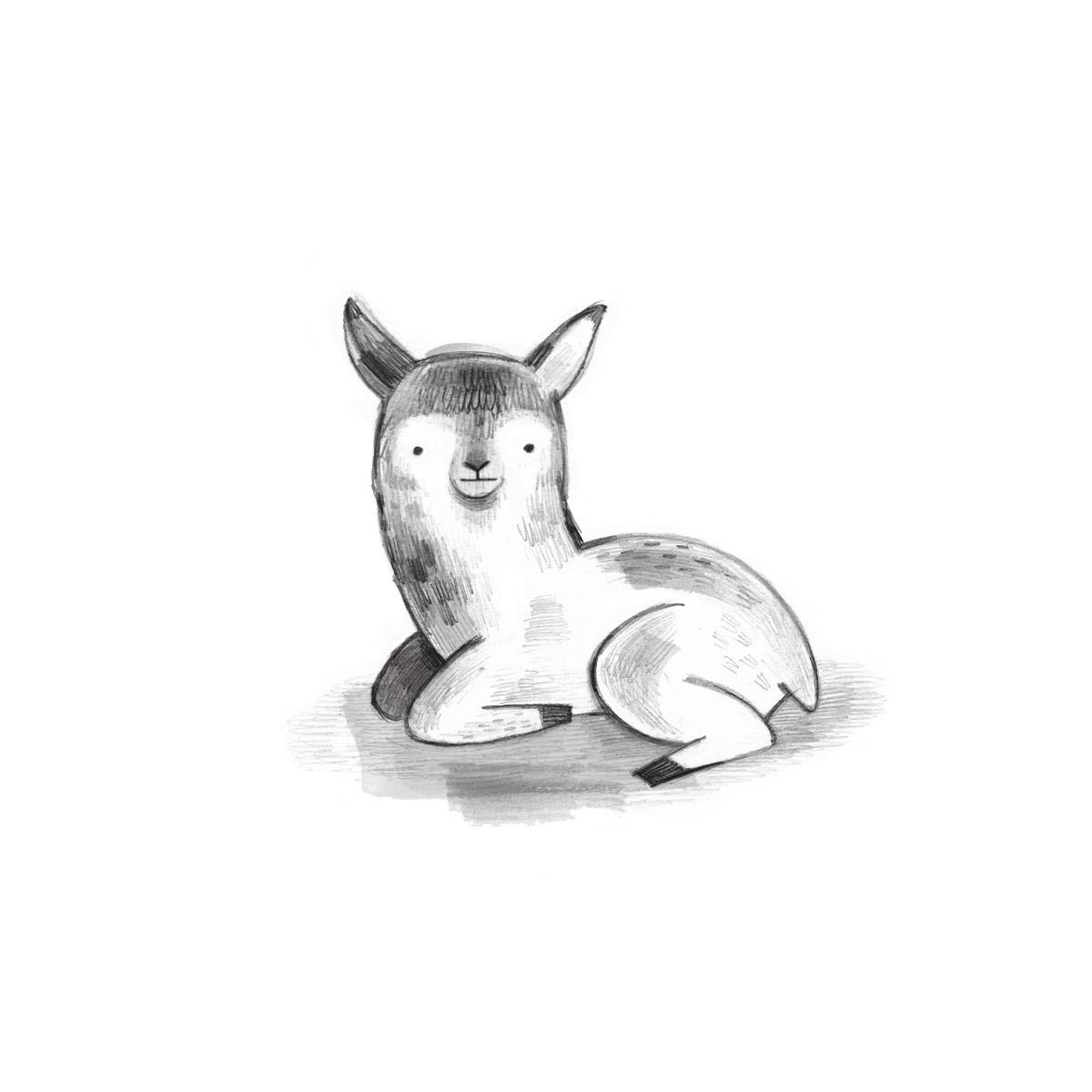 Llama post.jpg