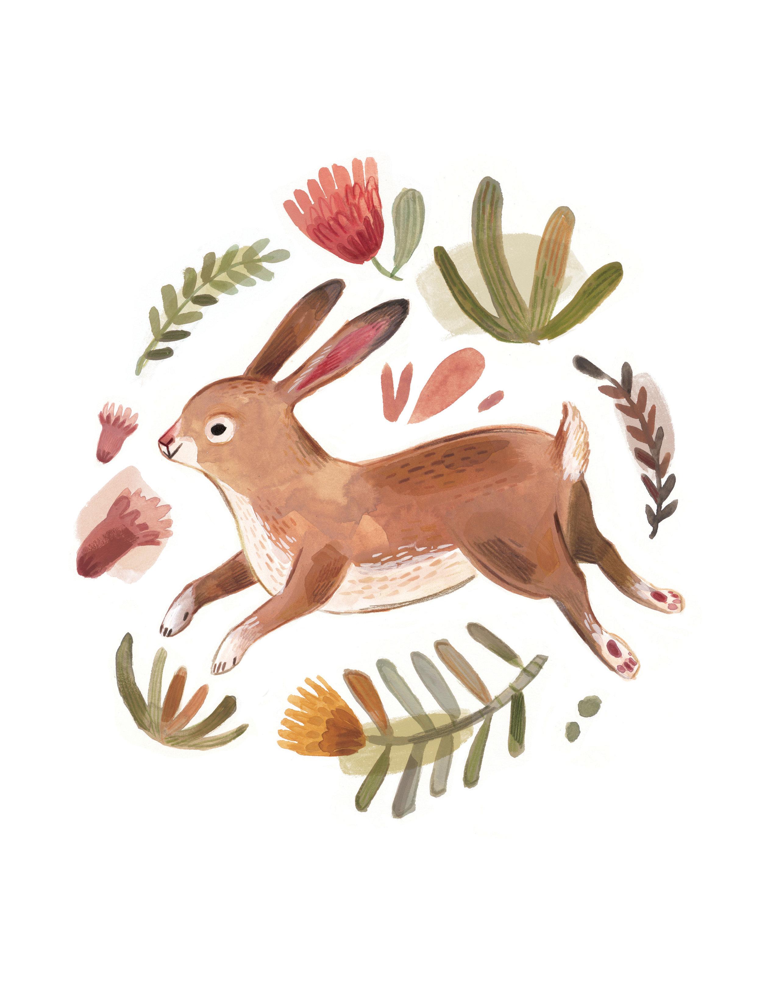 Hare LR2.jpg