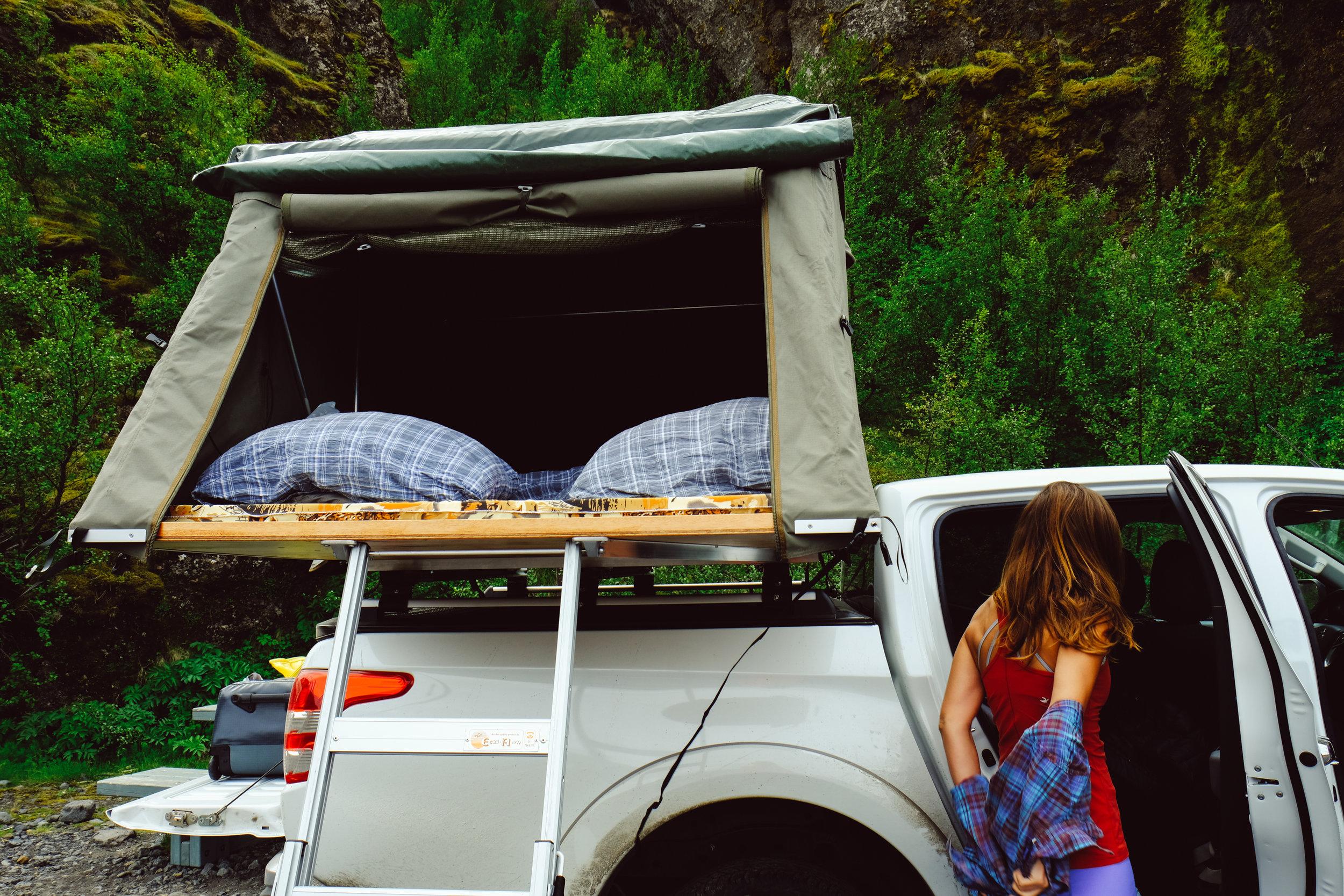 Nap time, Highlands