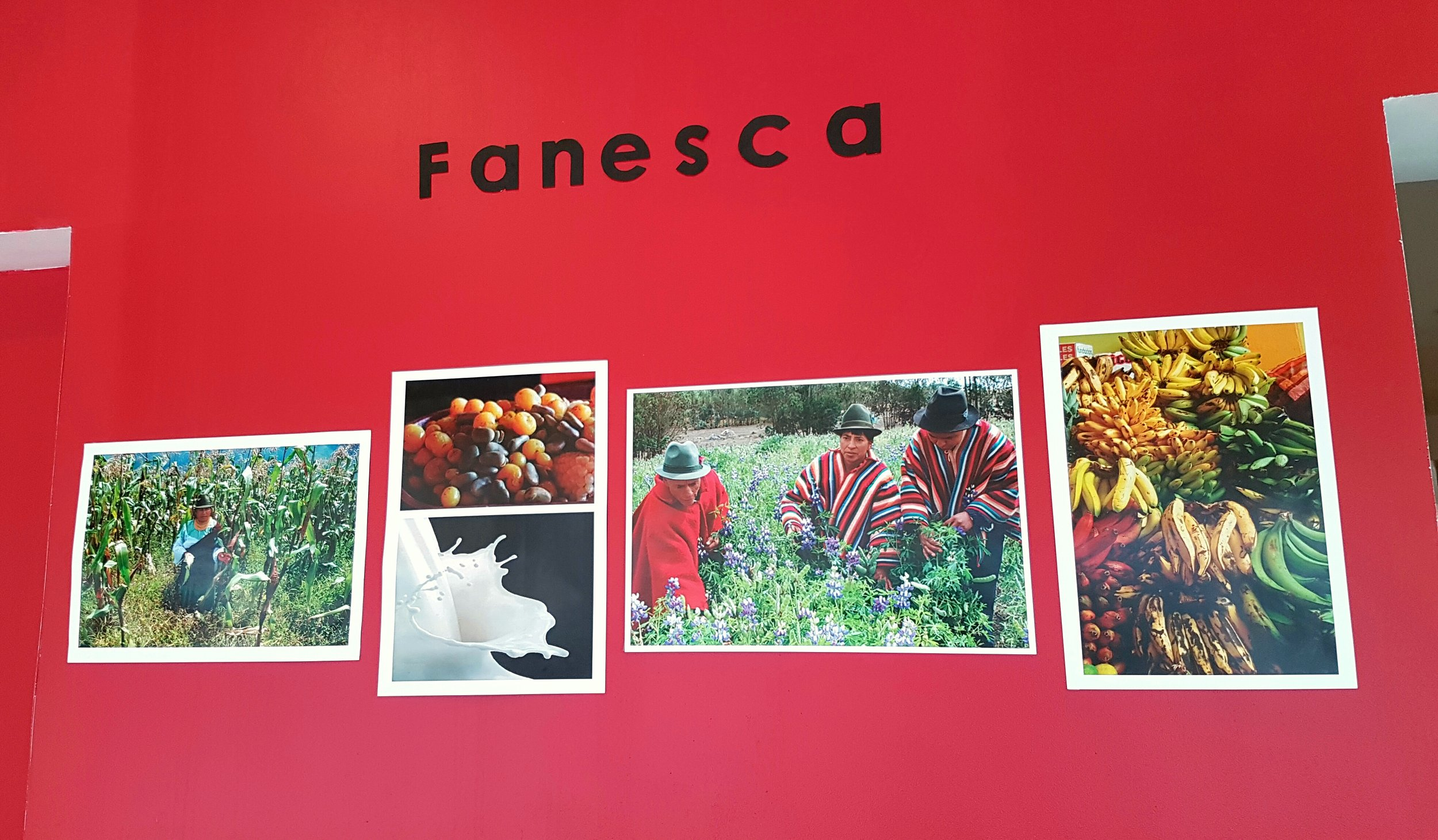 A photo display about Fanesca inside Achiote restaurant.