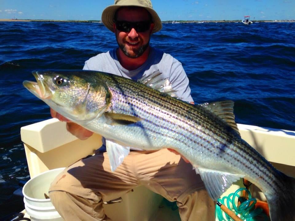Jeremy's Sweet 18# Striper Caught on a Live Mackerel in the Merrimack River