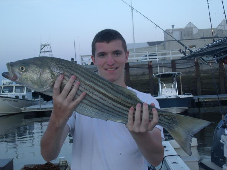 Tim with a nice 33 inch Striper caught live lining mackerel on Manolin Charters!