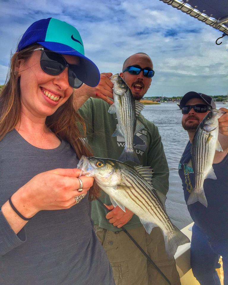 These Merrimack River stripers might small, but they are spectacular! This scene was on repeat for four hours yesterday!