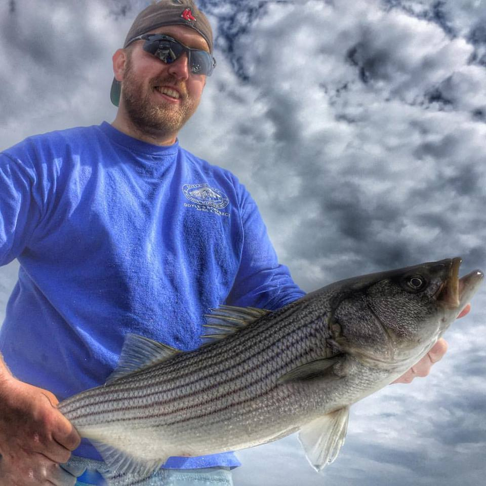 Jeff with the first striper of 2016 caught live lining a mackerel!