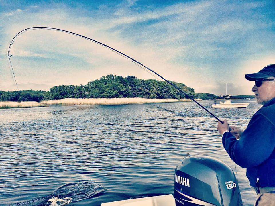 Bob with a striper on the fly while fishing in Newburyport