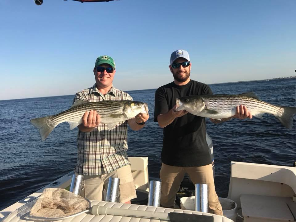 Striped bass charter fishing nrewburyport.jpg