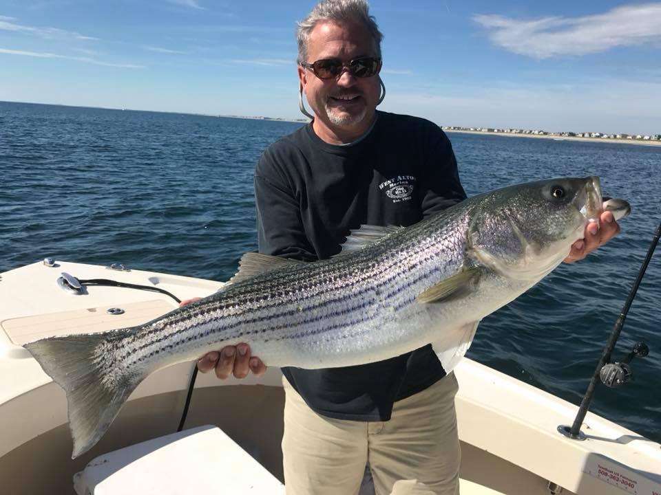 striped bass salisbury fishing charter .jpg
