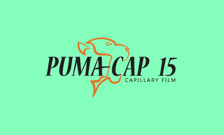 PumaCap_LOGO-14.png