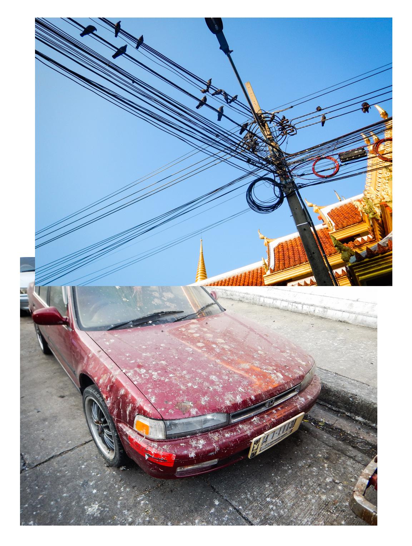 bangkok_birdpoop_pano.jpg
