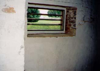 Same windows from inside the basement/kitchen.