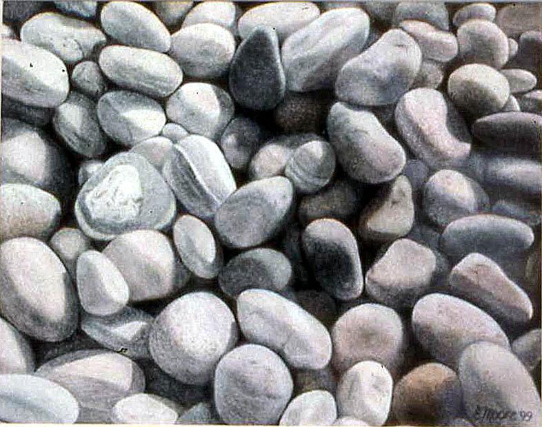 beach_rocks.jpg