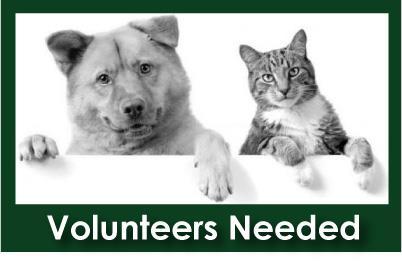 Volunteers_Needed.jpg