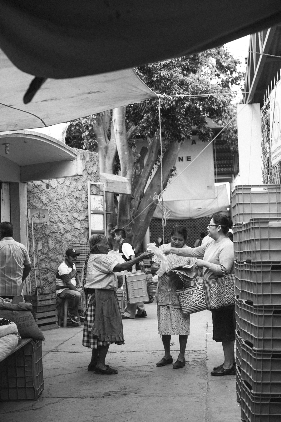 MARIACORONAPHOTOGRAPHY_OAXACA_TRAVEL_MEXICO_FILM_280.JPG