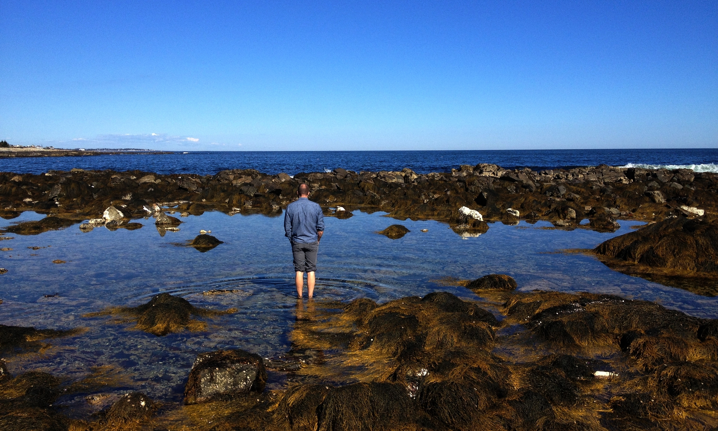 Exploring the tidal pools in Maine.