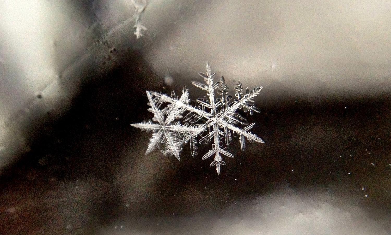 Macro view of snowflakes.