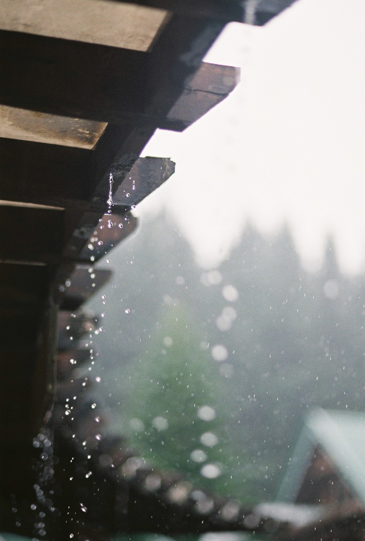 Japanese styled wood and rain ITCHBAN.com